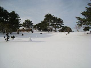 2011.1.28 08.jpg