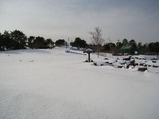 2011.1.28 12.jpg