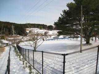 2011.1.28 16.jpg