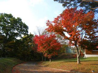 2011.10.28 011_800.jpg