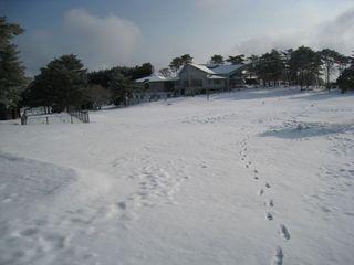 2011.2.11 3.jpg