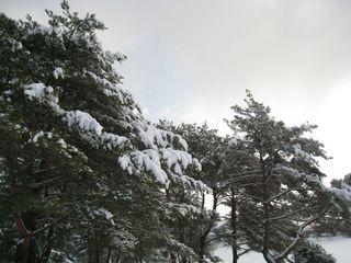 2011.2.15 13.jpg