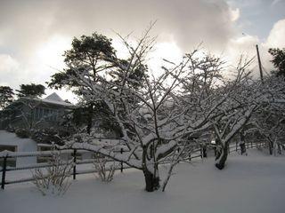 2011.2.15 19.jpg