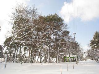 2011.2.15 23.jpg