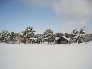 2011.2.15 5.jpg