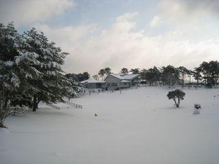 2011.2.15 7.jpg
