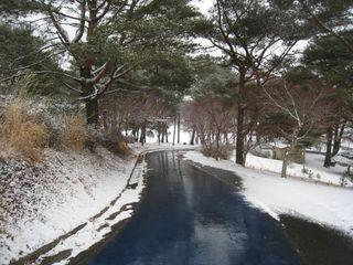 2011.3.11 遊歩道.jpg