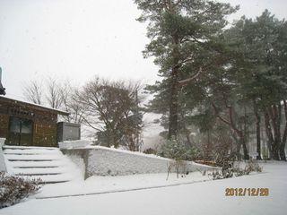 2012.12.28_800.jpg
