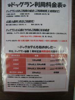 2012.7.12 011_800.jpg