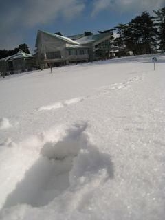 6日雪風景 .jpg
