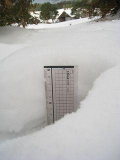 6日雪風景6.jpg