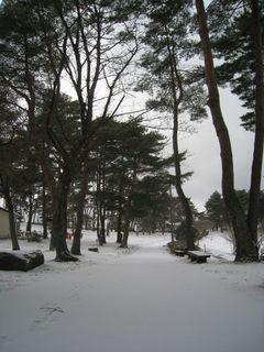 雪風景2.jpg